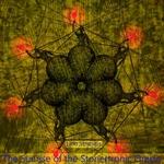 The Sunrise Of Stonertronic Oracle