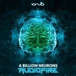 A Billion Neurons