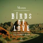 Birds Of Love (Gil Sanders Remix)