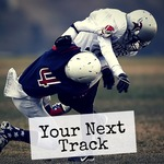VARIOUS - Your Next Track Vol 14 (Front Cover)