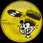 PEZNT feat SHEREE HICKS - You Got Me (Front Cover)