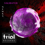 NEWKS - Validated (Front Cover)