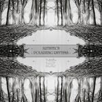 ARTINTECH - Polarizing Rhythms (Front Cover)