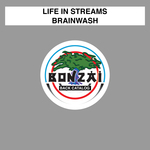 LIFE IN STREAMS - Brainwash (Front Cover)