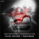 JOSA/TONY HAMMER/WILDERNESS/A-LINE - Carpe Noctem/Sentiment (Front Cover)