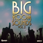 VARIOUS - Big Room Sounds Vol 2 (Front Cover)