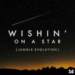 Dope Ammo/Rio Hellyer: Wishin' On A Star (Jungle Evolution)