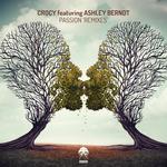 Passion - Remixes