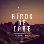 Birds Of Love (The Galaxy Remix)