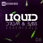 Liquid Drum & Bass Essentials Vol 06