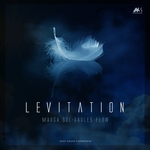 DARLES FLOW/MARGA SOL - Levitation (Deep House Experience) (Front Cover)