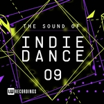 The Sound Of Indie Dance Vol 09