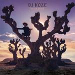 DJ KOZE feat ROISIN MURPHY - Illumination (Front Cover)