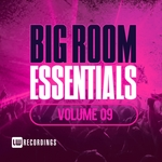 Big Room Essentials Vol 09