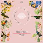 Candy Flip Presents Selection Vol 2