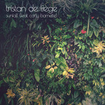 TRISTAN de LIEGE feat CARLY BARNETTE - Sunfall (Front Cover)