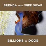 Billions Of Dogs