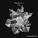 Paleo Pt 2