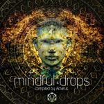 Various: Mindful Drops