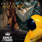 EMCK & JAY FROG - What You Want (Front Cover)