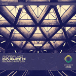 Endurance/In The Ditch