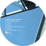 Ornithogallum EP