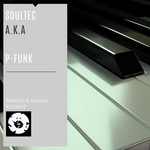 aka & SOULTEC - P Funk (Front Cover)
