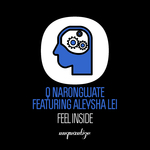 Q NARONGWATE feat ALEYSHA LEI OF HANLEI - Feel Inside (Front Cover)