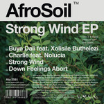 Strong Wind EP