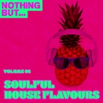 Nothing But... Soulful House Flavours Vol 06