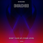 Don't Give Up (Your Love)