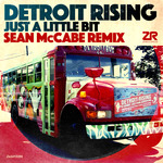 Detroit Rising: Little Bit (Sean McCabe remixes)