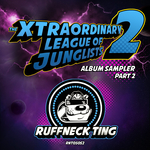 GENETIX/SUBSTANCE/DAZEE/JINX/THE FORCE/DJ PHLEX/BASSFACE SASCHA - The Xtraordinary League Of Junglists 2 Sampler 2 (Front Cover)