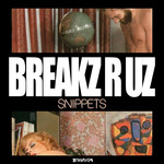 DJ PEABIRD - Snippets (Front Cover)