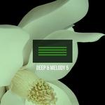 Deep & Melody 5
