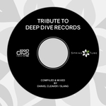 Tribute To Deep Dive Records (unmixed tracks)