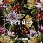 Frames Issue 17