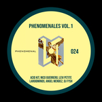 Phenomenales Vol 1