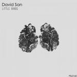DAVID SAN - Little Birds EP (Front Cover)