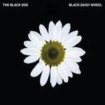 Black Daisy Wheel