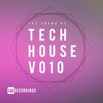 The Sound Of Tech House Vol 10