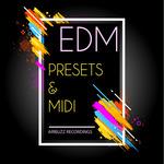 Airbuzz Recordings: EDM Midi & Presets (Sample Pack MIDI/Massive Presets)