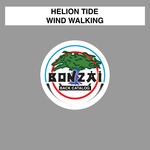 Wind Walking