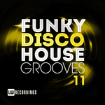 Funky Disco House Grooves Vol 11
