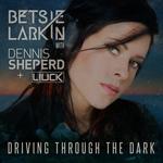 Driving Through The Dark