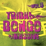 Tribal Bongo Massive Vol 5