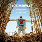 These Days (DJ Premier Remix)