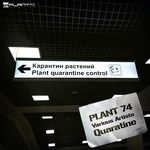 Plant 74 Quarantine