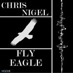 Fly Eagle