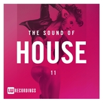 The Sound Of House Vol 11